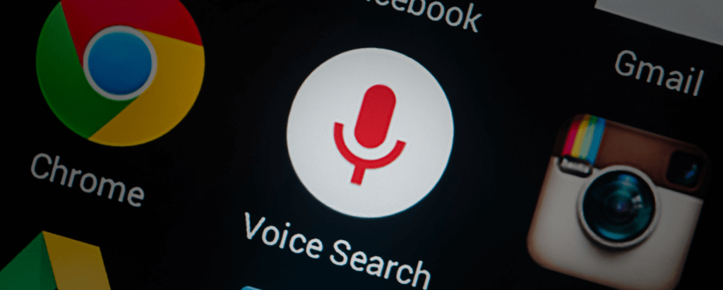 voice-search 2017